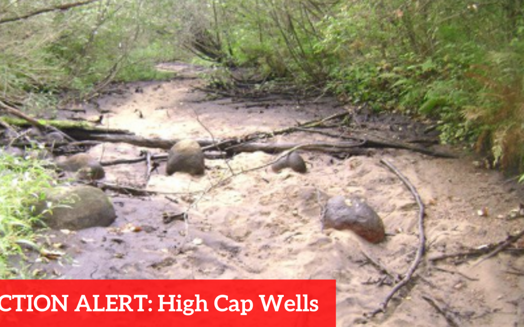 GUEST BLOG: Take Action, High Capacity Wells in Wisconsin
